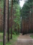Балатовский парк культуры и отдыха  Пермь